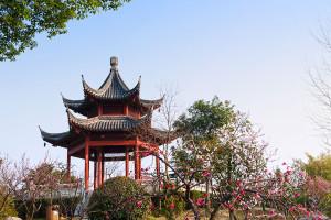 nanjing_194519186